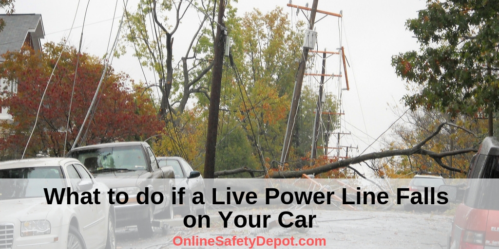 What to do if a Live Power Line Falls on Your Car