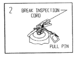 Step 2: Remove Pin, Break Inspection Seal - How to use a Fire Extinguisher